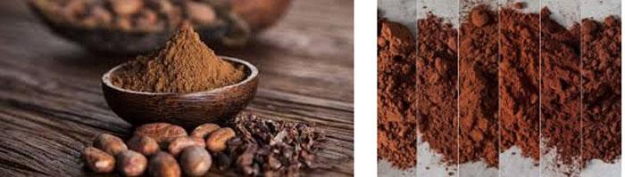 واردات پودر کاکائو عالی