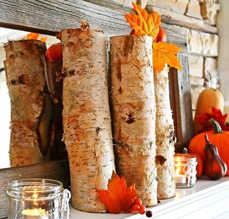 پاییز- درخت- تاروت