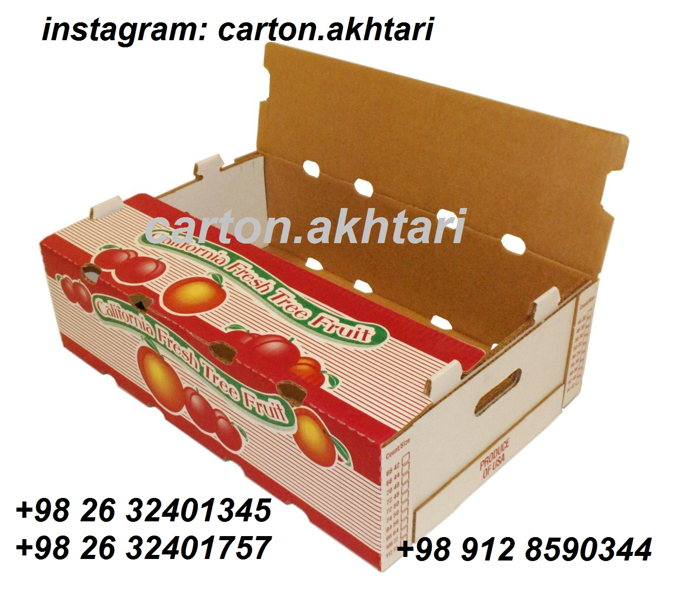 کارتن میوه صادراتی