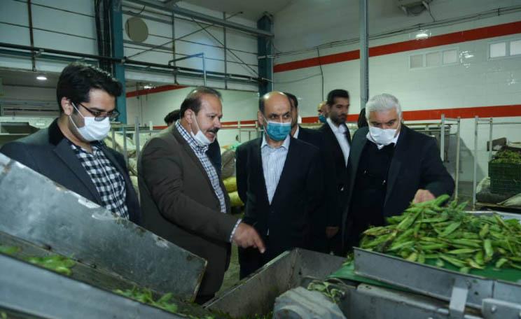 گسترش صنایع تبدیلی و افزایش تولید محصولات کشاورزی اولویت ما در سال جهش تولید است