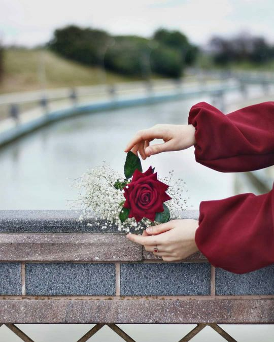 عکس گل  پروفایل اینستا