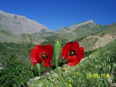 تصاویر روستای دره کی::سری اول