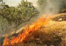 آتش سوزی در خالدنبی مهار شد/ 12 هکتار از مراتع در آتش سوخت