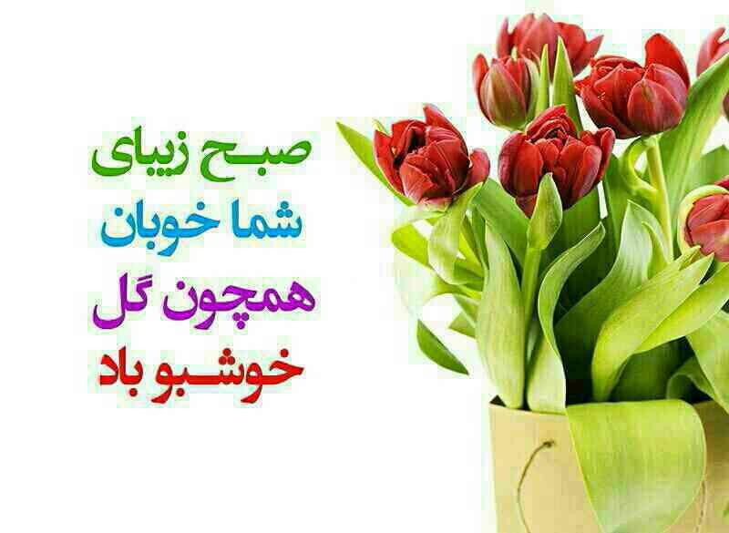 http://uupload.ir/files/pzhi_1447916371585501.jpg