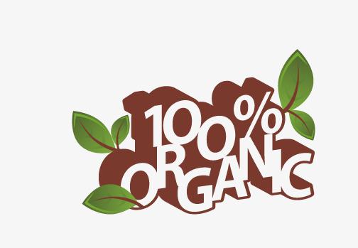 مواد غذایی ارگانیک بدون کالری خرید مواد غذایی ارگانیک بیسکوییت ارگانیک فروشگاه اینترنتی رزینو
