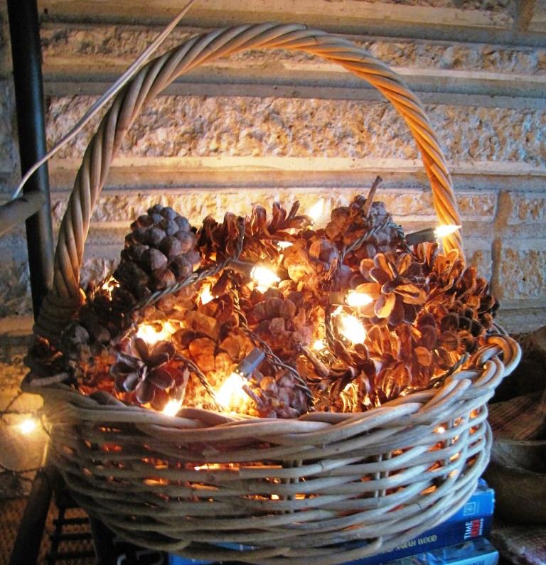پاییز- تاروت- گل