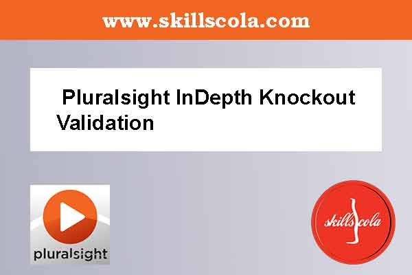 Pluralsight InDepth Knockout Validation