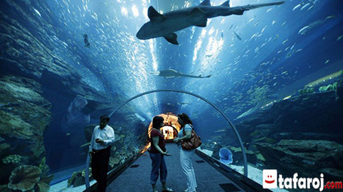 دنیای زیر آب لنکاوی
