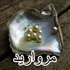 مروارید