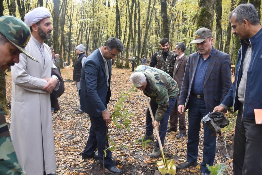 کشت 200 اصله نهال در پارک جنگلی النگدره