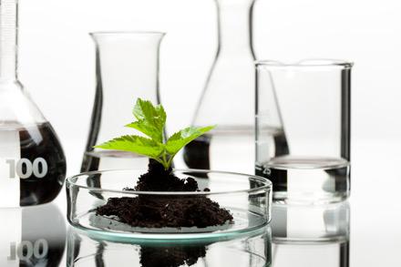 ترخیص مواد اولیه شیمیایی ترخیص مواد اولیه شیمیایی ترخیص مواد اولیه شیمیایی uy5v