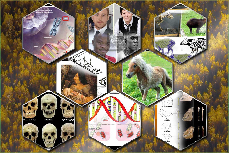 بخش 5 سلسله مقالات فرضیه ی تکامل؛ منطقه ی ممنوعه! (مقدمه)