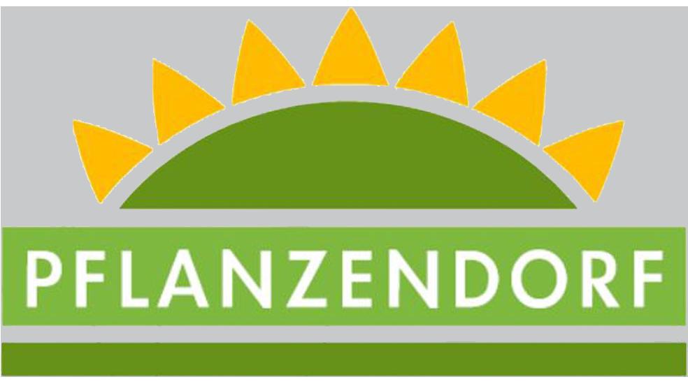 فلانزنـدورف