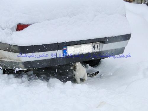 بارش برف سنگین در روستای خوجین . خوجین.پنجشنبه.28/11/95بارش برف سنگین
