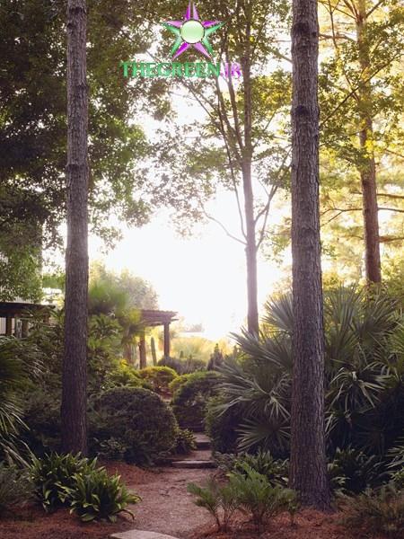 نمونه طراحی یک باغ سایه ای