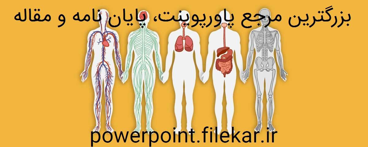 آشنایی با دستگاه های عصبی بدن انسان
