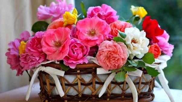 والپیپر اچ دی سبد گل های رنگارنگ