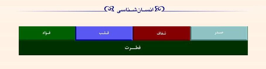 لایه های فطرت (انسان شناسی در قرآن)