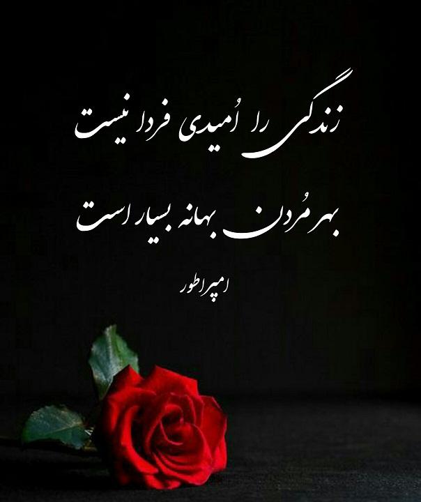 تک بیت زندگی را اُمیدی فردا نیست بهر مُردن بهانه بسیار است  احمد محمود امپراطور