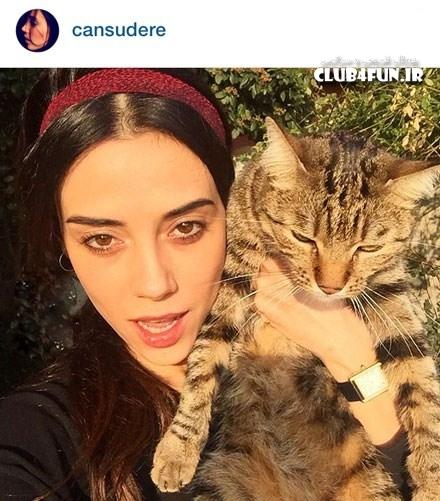 جانسو دره و گربه اش