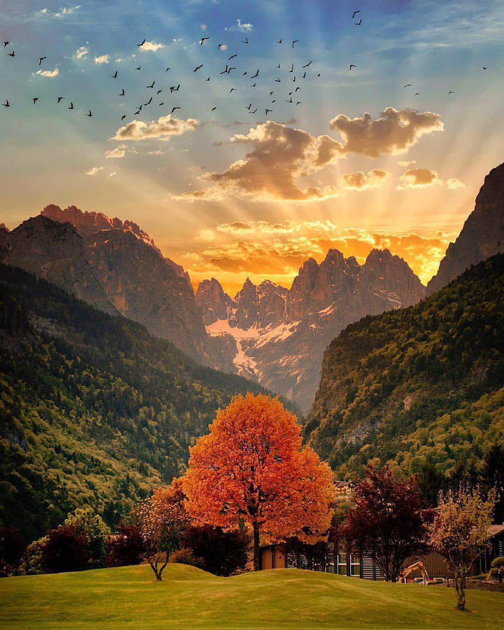 طبیعت زیبای دولومیت - Dolomites